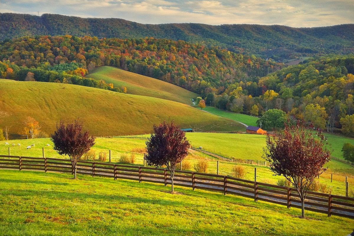 Charlottesville Va Equestrian Properties Luxury Horse Properties